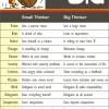 Small Thinker vs Big Thinker
